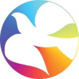 28 Marzo 2021: Festa delle Palme Diocesana Go(o)d news!